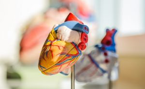 Donate Organ In Saudi Arabia Tawakkalna Registrations